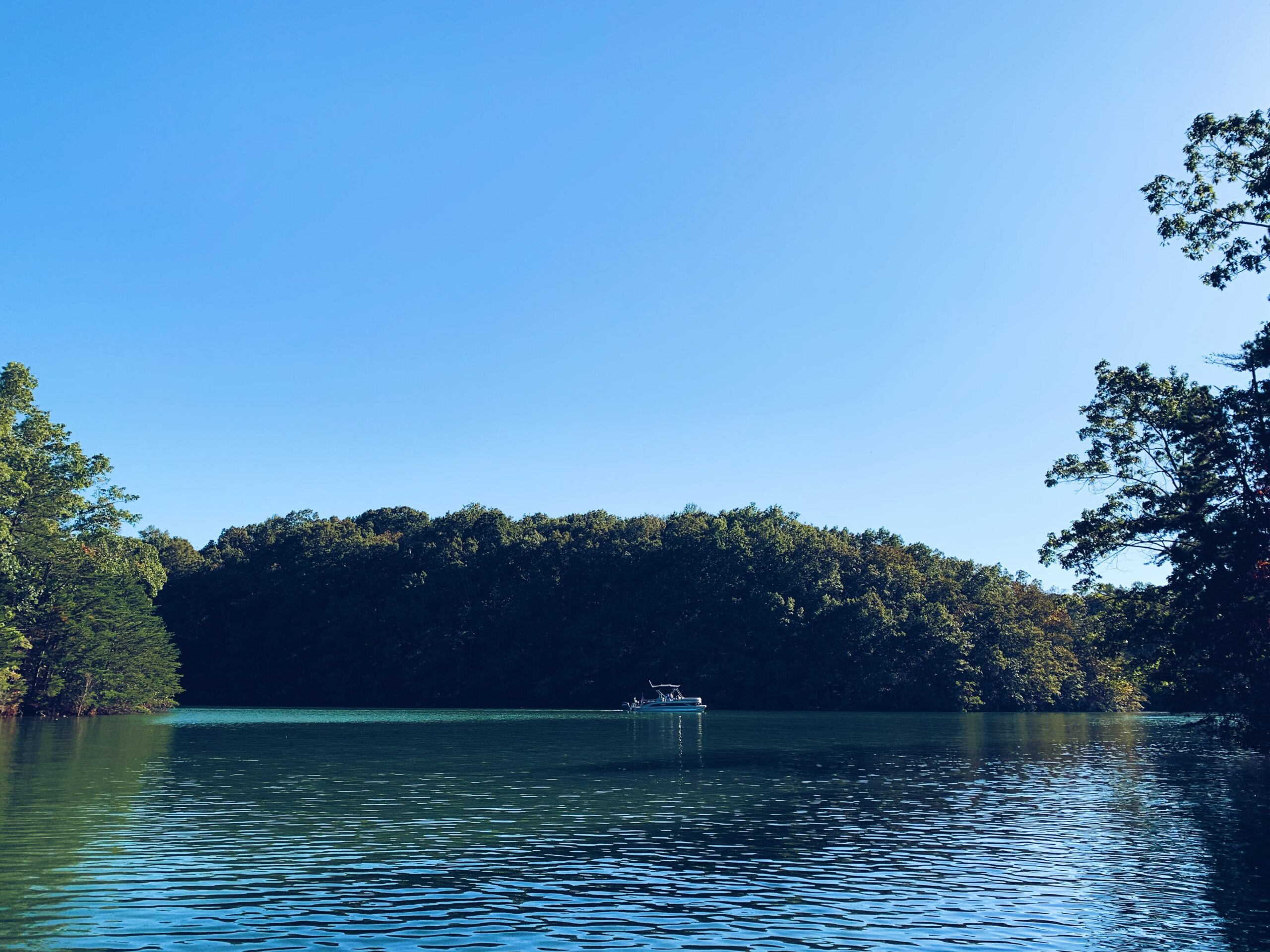 Watertoys2u customer review-cynthia-orange beach alabama